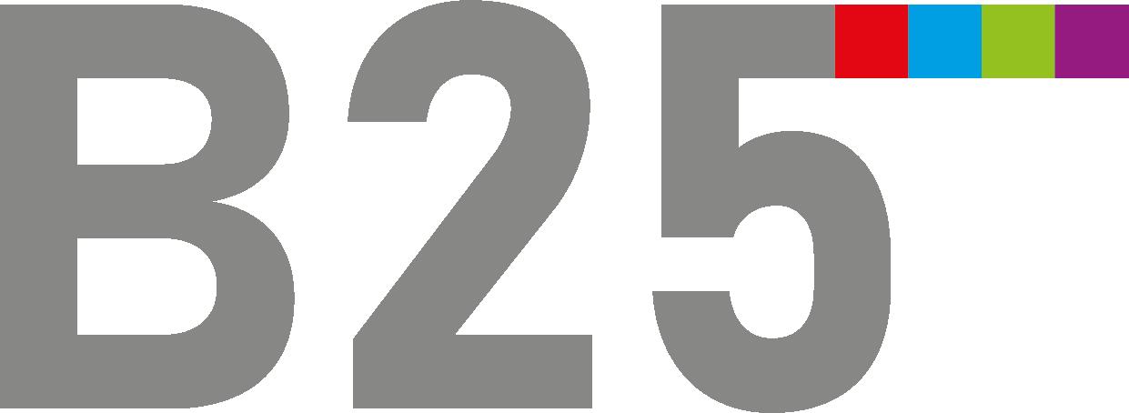 b25-ausbau.de